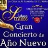 Strauss Festival Orchestra with Ballet: 'Gran Concierto De Año Nuevo '