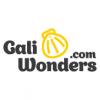 Galiwonders