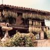Presentación del documental 'Horros: Ayalga y arca d'Asturies'