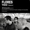 Concierto de Miguel Flores Trío