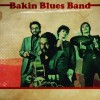 Festival 'Feito a Man 2012': Bakin Blues Band