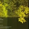 I 'Xornadas de Música Contemporánea': Programa completo