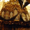 V 'Compostela Organum Festival': Esteban Landart