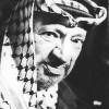 'Amal'06': 'Arafat, my brother'