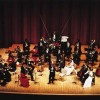 Grand New Year´s Concert: Johann Strauss