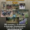 Campeonato de España de Mushing Tierra 2013