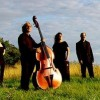 Concierto de la Orquesta Filarmónica de Cámara de Colonia