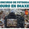 IX Concurso de fotografía 'Touro en Imaxes'