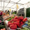 Market on the 5th in Touro