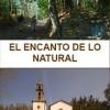 O Pino: Información turística
