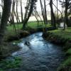 Gastrar free angling area