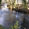 Zona libre de pesca del río Tambre - Oroso