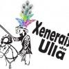 Carnaval tradicional: Xenerais da Ulla 2012