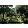 Jardín del Pazo de Faramello 1