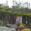 Jardín Botánico Fundación Paideia 7