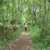 Circular Trail of Doade