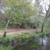 Playa fluvial de O Abeseiro de Toiriz 4