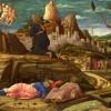 Life and apostleship
